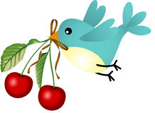 Bird with cherries Royalty Free Stock Image
