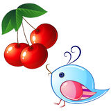 Bird and cherry Stock Images