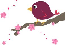 Bird on Cherry Blossom Stock Images