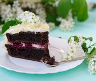 Bird-cherry flour homemade cake with cherries. Sour cream and almond Stock Images