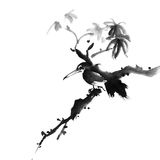 Bird. Chinese traditional ink painting bird on white background Stock Photos