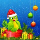 Bird on Christmas Gift Royalty Free Stock Photos
