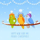 Bird christmas Royalty Free Stock Photo
