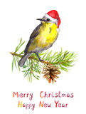 Bird on christmas tree with pine cone. Watercolor postcard Stock Photos