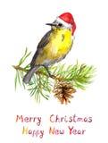 Bird on christmas tree with pine cone. Watercolor postcard Stock Photos