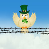 Bird with clover Stock Image