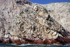 Bird colonies on rocks national park Isla de Ballestas, Peru Royalty Free Stock Images