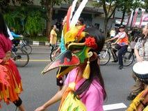 Bird costumes Royalty Free Stock Photos