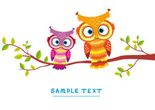 Bird couple. Illustration in a vintage style the two owls sitting on a branch Royalty Free Stock Photos