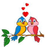Bird couple in love Royalty Free Stock Photo