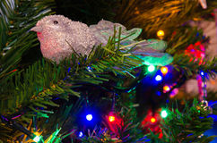 Bird decoration on christmas tree Royalty Free Stock Image