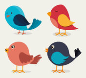 Bird design, vector illustration. Royalty Free Stock Images