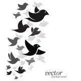 Bird design on white background Stock Image