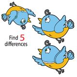 Bird differences. Vector illustration of kids puzzle educational game Find 5 differences for preschool children with cartoon bird vector illustration