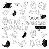 Bird doodle set. vector illustration Royalty Free Stock Photo