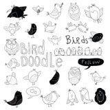 Bird doodle set. vector illustration Royalty Free Stock Photo