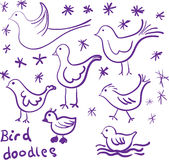 Bird doodles Stock Image