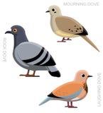 Bird Dove Pigeon Set Cartoon  Stock Photos