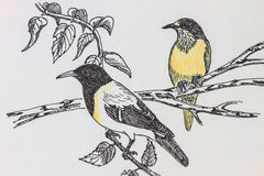Bird drawing. The original drawing of birds on white paper Royalty Free Stock Photo