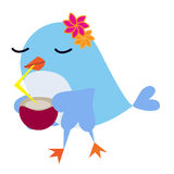 Bird drinking juice. With beak and flowers on the head Stock Image