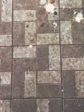 Bird droppings on the sidewalk, tile, background texture. Wallpaper royalty free stock photos