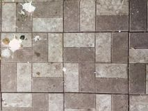 Bird droppings on the sidewalk, tile, background texture. Wallpaper stock photo