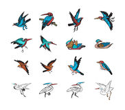 Bird and duck chinese style vector Royalty Free Stock Photos