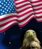 Bird eagle and American flag. Close up Royalty Free Stock Photo