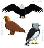 Bird Eagle Set Cartoon Vector Illustration Stock Photography