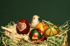 Bird in easter eggs nest. Isolated view stock images