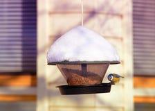 Bird eating in birdfeeder in winter Rovaniemi. Lapland, Finland Stock Photos