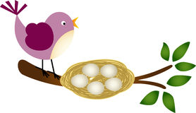 Bird with Eggs in a Nest on a Branch. Scalable vectorial image representing a bird with eggs in a nest on a branch, isolated on white stock illustration