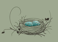 Bird eggs in the nest Stock Photography