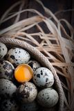 Bird eggs with one of them fracture and view the yolk Royalty Free Stock Photos
