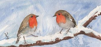 Bird, European Robin, Fauna, Watercolor Paint Stock Photo