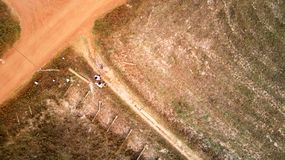 Bird eye eagle view from a drone of a road crossing rice fields Stock Image