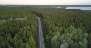 Bird eye view boreal coniferous forest with birch spots road