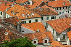 Bird eye view of buildings in Kotor, Montenegro Royalty Free Stock Photo