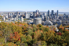 Bird eye view of downtown Montreal Stock Photography
