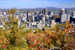 Bird eye view of downtown Montreal Royalty Free Stock Photos