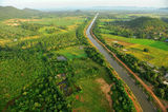 Bird eye view of rice field Stock Photo