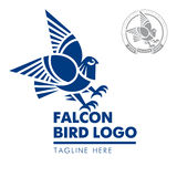 Bird falcon logo 03. Template corporate company signs . Logo , corporate style in the shape of a bird with outstretched wings . Bird eagle , eagle . Strict Royalty Free Stock Photo