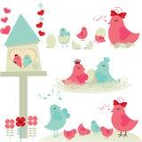 Bird Family. Set and white backgrounds royalty free illustration