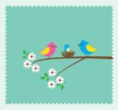 Bird family Stock Photography