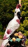 Bird, Fauna, Beak, Feather stock images