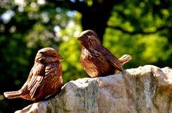 Bird, Fauna, Beak, Organism Royalty Free Stock Images