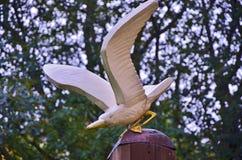 Bird, Fauna, Beak, Tree Stock Images