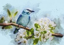 Bird, Fauna, Watercolor Paint, Painting Stock Image