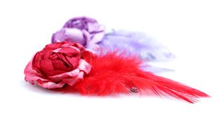 Bird feather hair clips Royalty Free Stock Photos