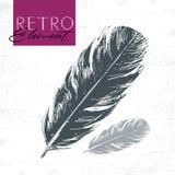 Bird feather in retro style. Stock Photos
